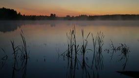 Туман поднимает над озером сток-видео