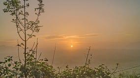 Туман рассвета над полями Стоковые Фото