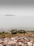 Туман селезней Стоковые Фотографии RF