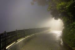 Туман тайны в темном парке с путем осветить Стоковые Изображения RF