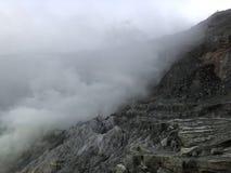 Туман токсический внутри стоковое изображение