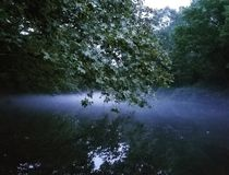 Туман устанавливая над рекой Стоковые Изображения