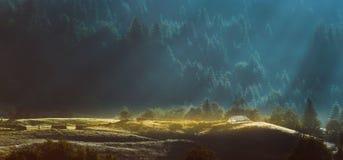 Туман утра в горах Стоковые Фотографии RF