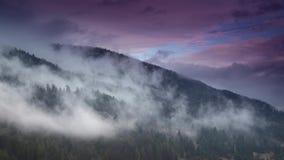 Туман утра в долине горы холмы туманные сток-видео