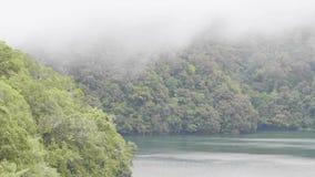 Туман утра над тропическим озером и зеленые гористые местности покрыли помох и озеро тропического ландшафта тропического леса тум акции видеоматериалы