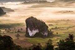 Туман утра над землей Стоковая Фотография