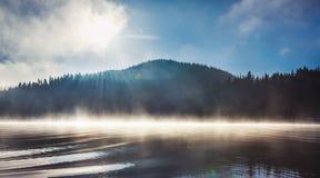 Туман утра на озере стоковые фото