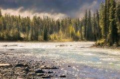 Туман утра на реке Athabasca стоковое изображение