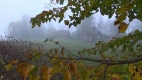 туман утра осени в старой ферме сток-видео