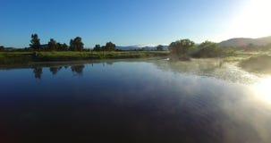 Туман утра от воды с птицей на солнечный день видеоматериал