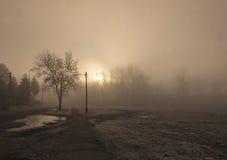 Туман утра Стоковая Фотография RF