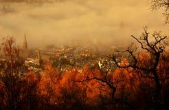 Туман утра Стоковое Фото