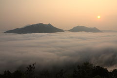 Туман утра Стоковые Изображения