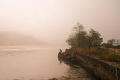туман Стоковое Изображение