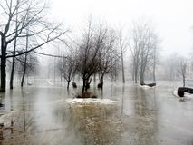 туман Стоковая Фотография