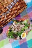 туна салата камс Стоковые Фотографии RF