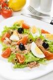 туна салата мяса яичка Стоковые Фото