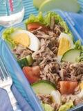 туна салата обеда коробки Стоковое Изображение