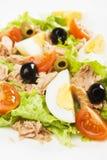 туна салата яичка Стоковое Фото