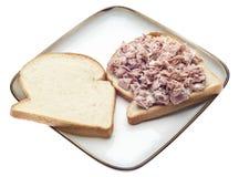 туна сандвича салата стороны открытая Стоковая Фотография