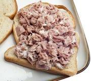 туна сандвича салата стороны открытая Стоковое фото RF