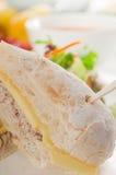 туна сандвича салата сыра Стоковое Фото