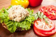туна сандвича салата Стоковая Фотография