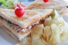 туна сандвича салата Стоковое Изображение RF
