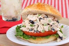 туна сандвича салата Стоковое Фото