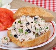 туна сандвича салата Стоковые Фотографии RF