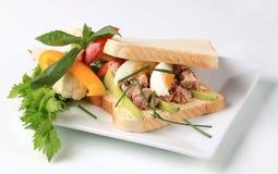 туна сандвича Стоковое Изображение RF