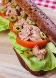 туна сандвича Стоковое Изображение