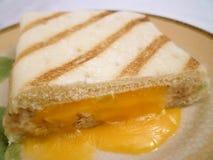 туна сандвича panini melt Стоковое Изображение