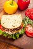 туна сандвича sald Стоковые Изображения RF