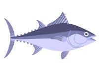 туна Стоковая Фотография