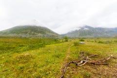Тундра в субполярном Урале с взглядами гор на горизонте Стоковое фото RF