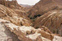 Тунис, оазис пустыни Стоковые Изображения