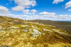 Тундра горы в Лапландии Стоковое Изображение
