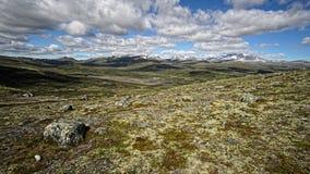Тундра на горной цепи Dovrefjell в Норвегии Стоковые Фото