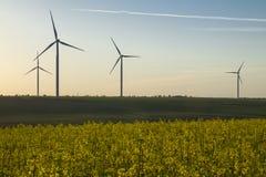 Турбины энергии ветра на предпосылке неба захода солнца, природе генератора энергии дружелюбной Желтое поле сурепки Стоковое Фото