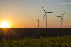 Турбины энергии ветра на предпосылке неба захода солнца, природе генератора энергии дружелюбной Желтое поле сурепки Стоковая Фотография RF