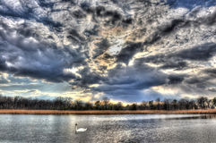 Турбулентный пруд Стоковая Фотография