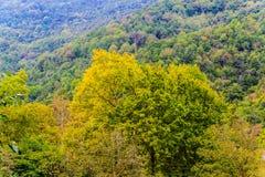 Турецкая сельская местность Стоковое фото RF