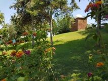 Турецкий сад с красивыми цветками и тропическим солнцем Стоковые Изображения