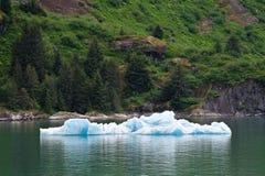 Туризм в Аляске 2 Стоковые Фотографии RF