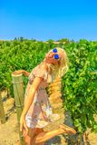 Туризм Калифорнии виноградника стоковое изображение rf