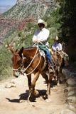 туризм каньона грандиозный Стоковое Изображение RF