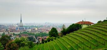 Турин (Турин), панорама от холмов Стоковая Фотография RF