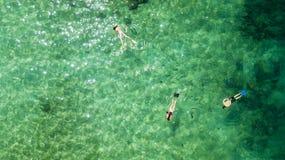 3 туриста плавая в воде бирюзы стоковые изображения rf