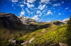 Туристская женщина в горах стоковое фото rf